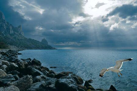 Rocky Morza krajobrazu. Crimea Ukrainy