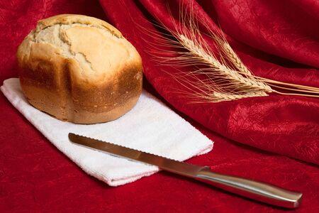 stillife: stillife with bread and knife