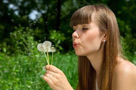 fragile girl blowing a dandelion, which scatters. blowballs photo