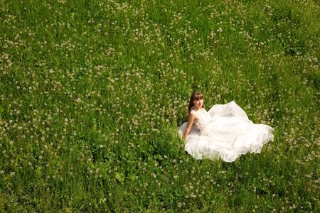 attractive girl in white dress sitting on meadow. outdoor shot photo