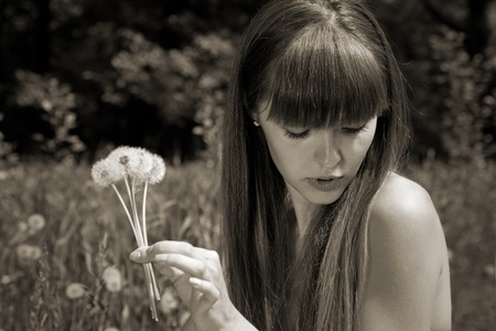 fragile girl holding dandelions in hand. blowballs photo