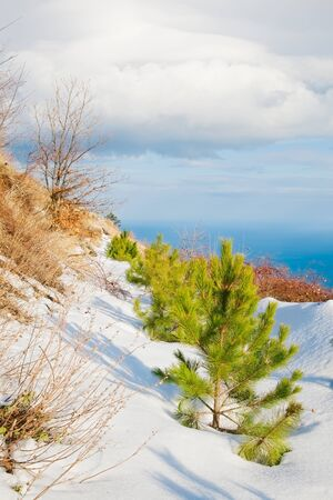 wintry: wintry mountains landscape Stock Photo