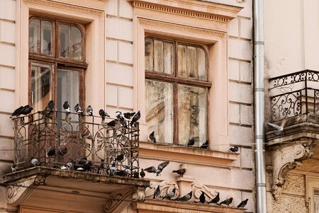 old window and a balcony with pigeons. close-up photo