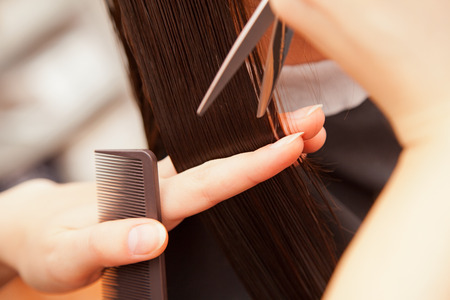 haircut: creating hairstyles hairdresser at salon. indoor shot Stock Photo