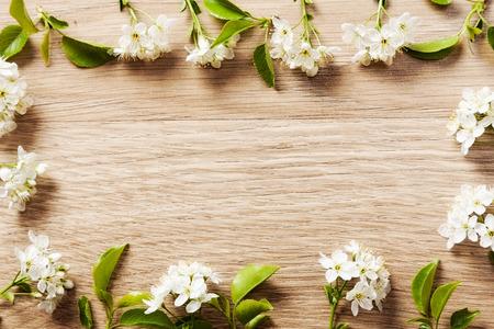 木製の背景テクスチャの vetochkahv フレームに桜の美しい花。 写真素材