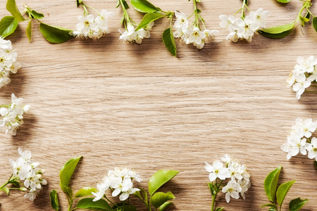 may: beautiful flowers cherry on a vetochkahv frames on wooden background texture.