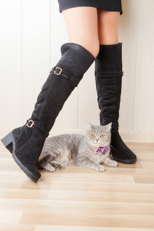 suede: legs in boots made of suede and cat