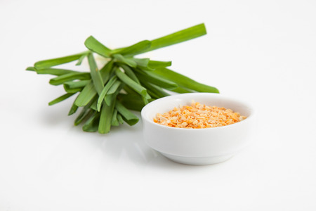 granules: young green garlic with the dry granules. close-up