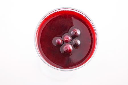 panna cotta with fresh berry black currant and berry jam 版權商用圖片