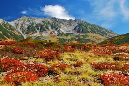 Mt. Tateyama-autumn Stock Photo