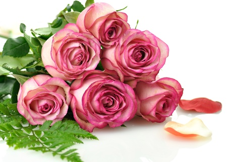 rose bouquet: pink roses