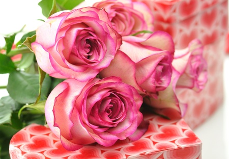 pink roses and gift for St.Valentine's Day  Stock Photo - 8648989