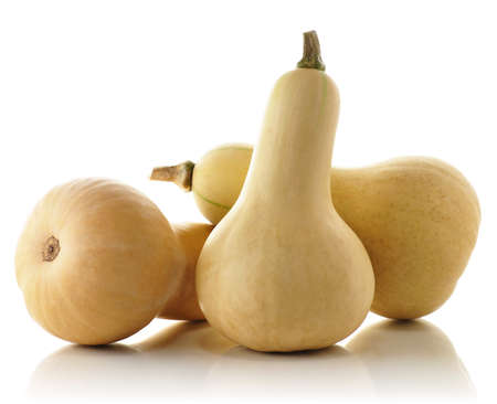 butternut: Butternut squash Stock Photo