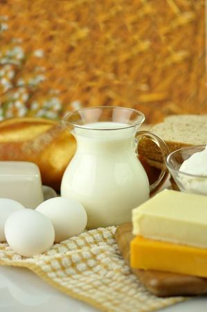 Frische Eier und Milcherzeugnisse  Standard-Bild - 8896423