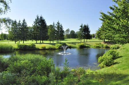 summer landscape with pond and golf course