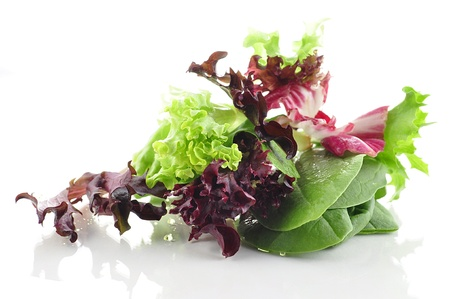 mixed: salad leaves assortment Stock Photo