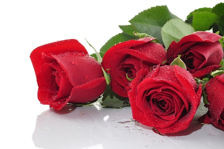 ramos de flores: rosas rojas