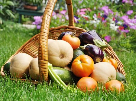 fresh organic vegetables in a basket on a grass Stock Photo - 10422313