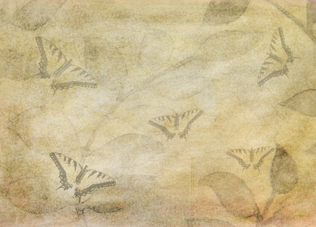 textured grunge background with leaves and butterflies photo