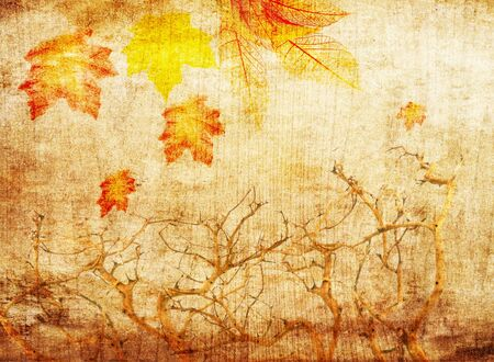grunge abstract fall background with trees and colorful leaves photo