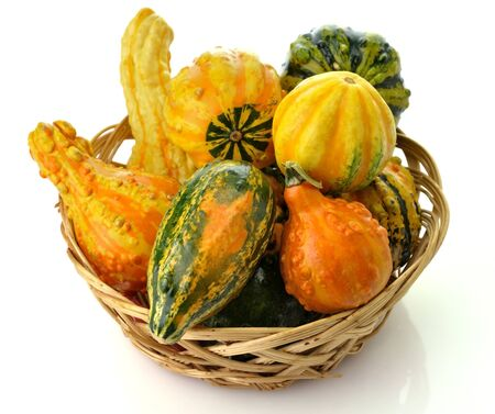 gourds: Small Colorful Gourds Collection In A Basket Stock Photo