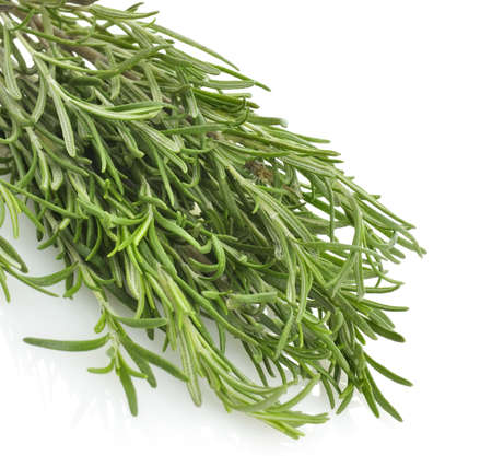 Fresh Rosemary Herbs On White Background,Close Up Stock fotó