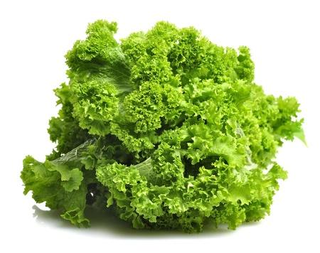 lechuga: Curly frescas hojas de mostaza verde Foto de archivo