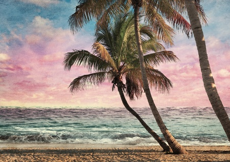 palm tree sunset: Grunge Image Of Tropical Beach At Sunset