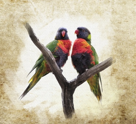 backround: Grunge  Background With Colorful Parrots