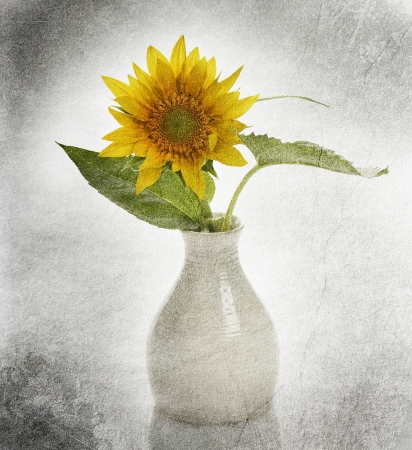 Grunge Image Of Sunflower In A Vase Stock fotó