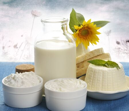 Dairy Products On Nature Background Standard-Bild - 15168118
