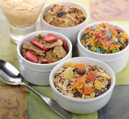 朝食コレクション ミューズリーとフルーツとナッツのフレーク