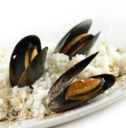 Cooked Mussels With  Sauce And Rice 免版税图像 - 16566133