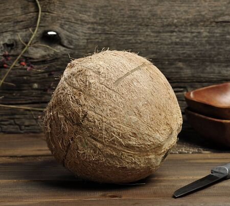 The Whole Coconut, Close-up Stockfoto
