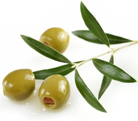 olive green: Green Olives With A Olive Tree Branch