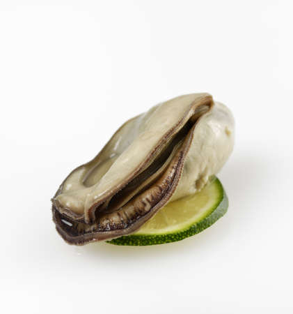 Oyster With Lemon On White Background 版權商用圖片