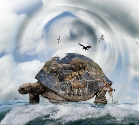 동물을 들고 세계 거북이 개념 스톡 콘텐츠