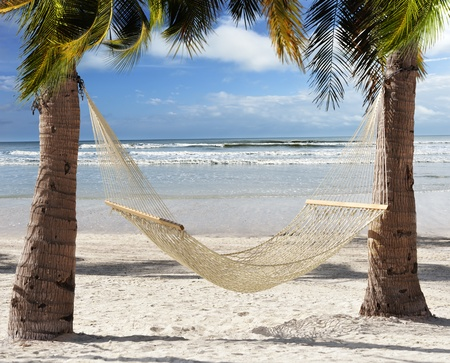 A Hammock In The Shadow Of The Palms In The Tropical Beach