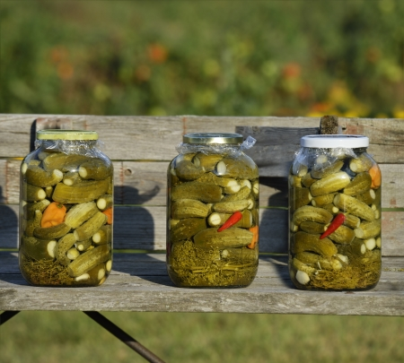 Jars Of Pickled Cucumbers On A Wooden Banch In The Garden
