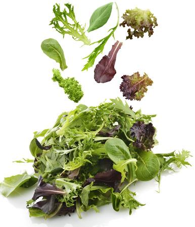 ensalada verde: Ensalada de hojas frescas de surtido en el fondo blanco Foto de archivo