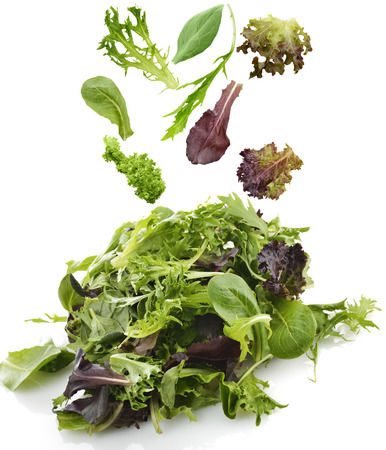spinach salad: Fresh Salad Leaves Assortment On White Background