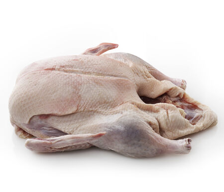 Raw Whole Duck On White Background