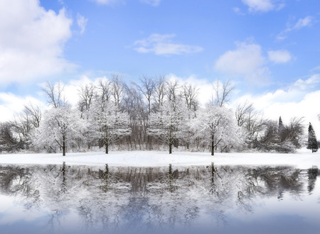 Winter Landscape With Trees And Lake photo