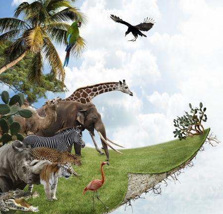 야생 동물과 자연 개념