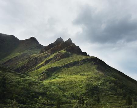 denali: Alaska Landscape In Denali National Park Stock Photo