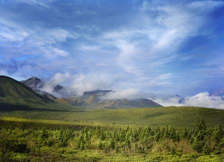 denali:  Alaska Landscape In Denali National Park