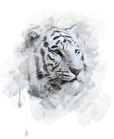 Retrato de tigre blanco. Pintura Digital Foto de archivo - 28714180