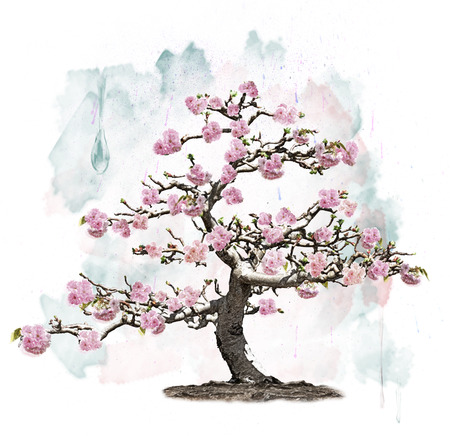 Watercolor Image Of Pink Blossoming Tree photo