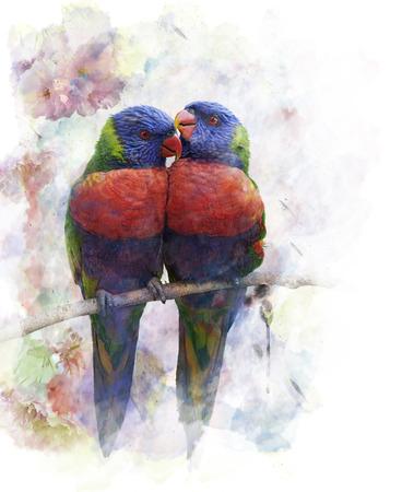 Watercolor Digital Painting Of Rainbow Lorikeet Parrots