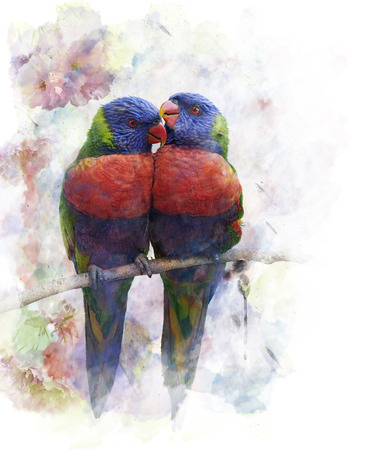 watercolour: Watercolor Digital Painting Of Rainbow Lorikeet Parrots